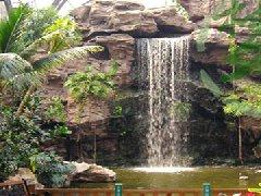 景观园林 天津假山,庭院设计,天津假树,保鲜棕榈树,室内仿真
